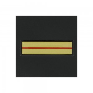 Galon de Poitrine Résine Velcro Gendarmerie et SP - Adjudant-Chef ou Adjudant
