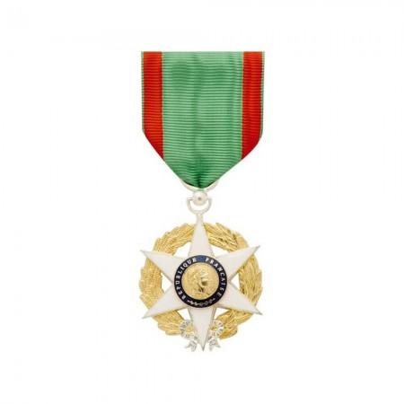 Médaille Ordonnance de l'Ordre du Mérite Agricole - Chevalier