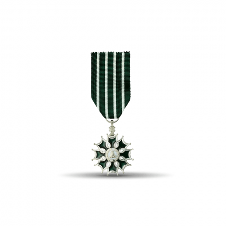 Médaille Ordonnance Ordre des Arts et des Lettres - Chevalier