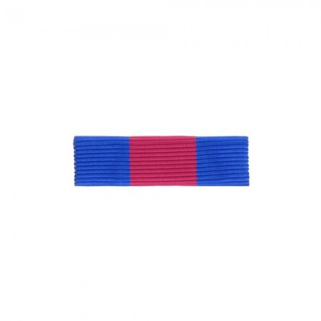 Barrette Dixmude MRV-DSI (ex-SMV) - des Réservistes Volontaire de Défense et de Sécurité Intérieure - Bronze