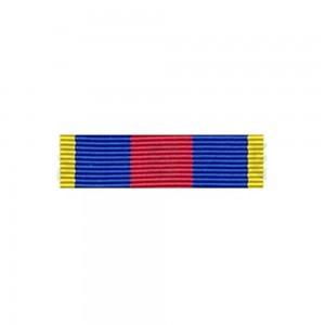 Barrette Dixmude MRV-DSI (ex-SMV) - des Réservistes Volontaire de Défense et de Sécurité Intérieure - Or